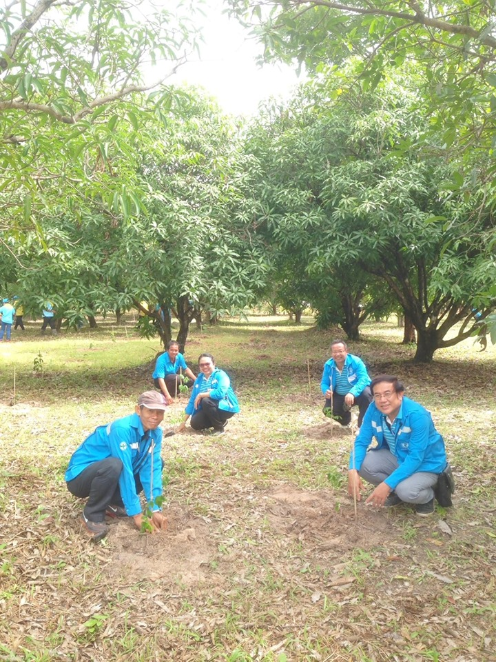 ไฟล์แนบ กปภ.สาขาอำนาจเจริญร่วมกิจกรรมจิตอาสา เราทำความดีด้วยหัวใจ ปลูกป่าเฉลิมพระเกียรติ