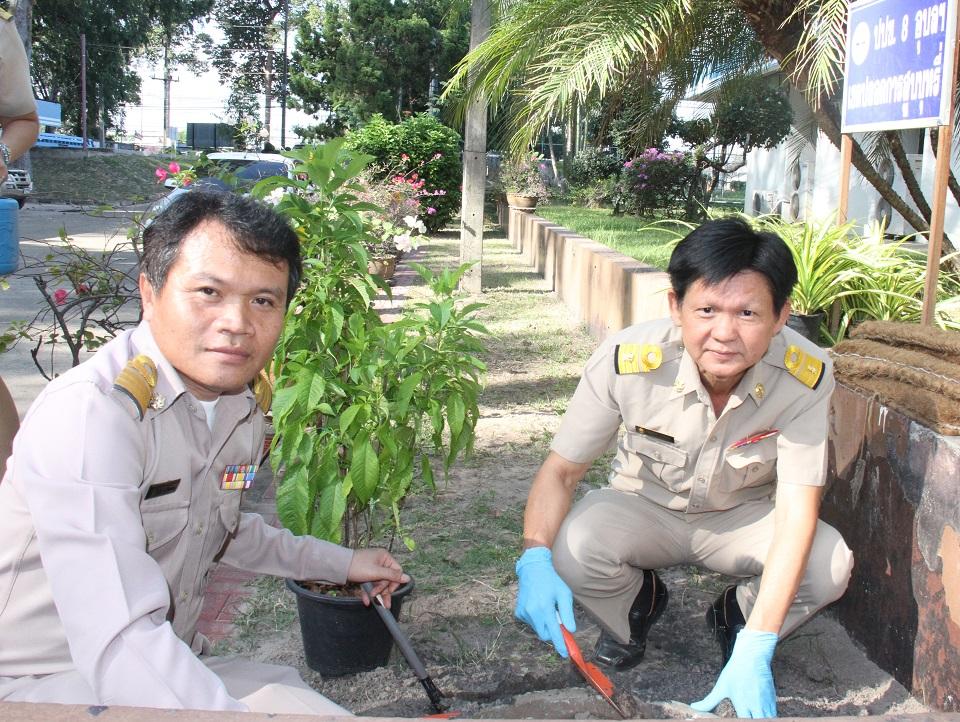 ไฟล์แนบ กปภ.ข.8 จัดกิจกรรมปลูกต้นไม้เนื่องในวันรักตันไม้ประจำปีของชาติ 2562